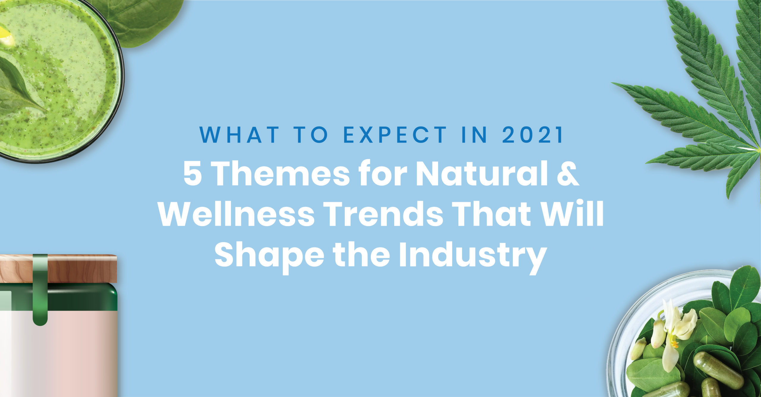 Cover image for 5 themes for 2021 natural and wellness trends